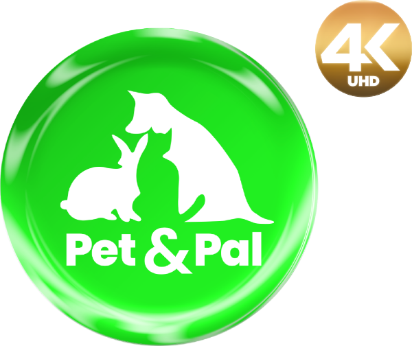 Pet & Pal 4K logo